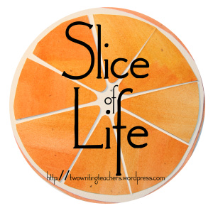 Please click on the image to go to the Two Writing Teachers blog to see what others have written for their Slice of Life Challenge posts.